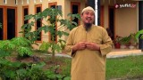 Ceramah Pendek: Awas, Jangan Merasa Aman dari Bahaya Syirik!