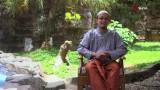Cucilah Tangan Sebelum Tidur – Ustadz Aris Munandar