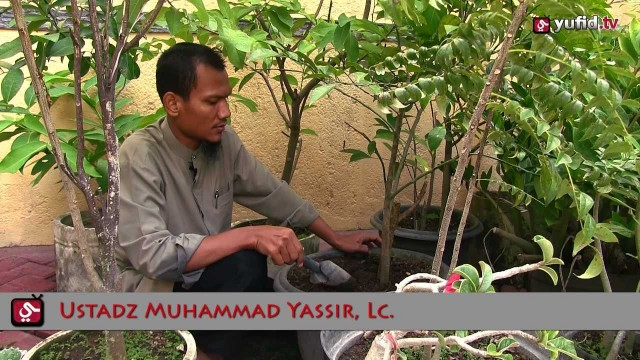 Motivasi Islami: Pengomposan Dosa
