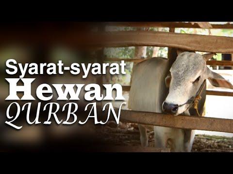Serial Fikih Islam 2 – Episode 12: Syarat-Syarat Hewan Qurban – Ustadz Abduh Tuasikal