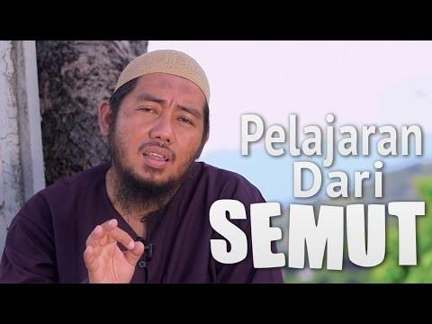 Ceramah Singkat: Pelajaran Dari Semut – Ustadz Abu Fairuz, MA.